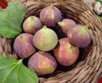 figues, aliment riche en fer